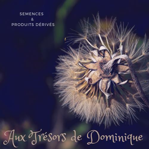 Aux trésors de Dominique